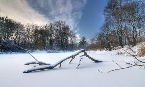 Praterau im Winter