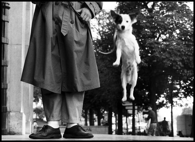 Erwitt_France_Paris_1989_