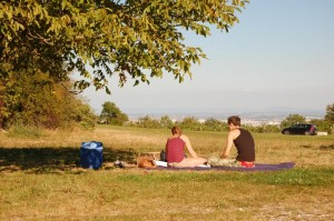 Picknick am Cobenzl mit Panoramablick auf Wien