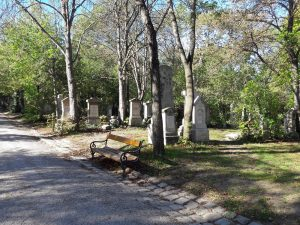 Wege durch den Friedhof