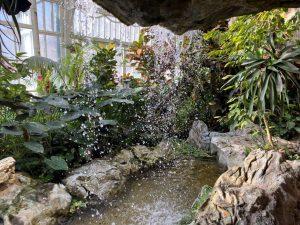 Schmetterlinghaus Wasserfall